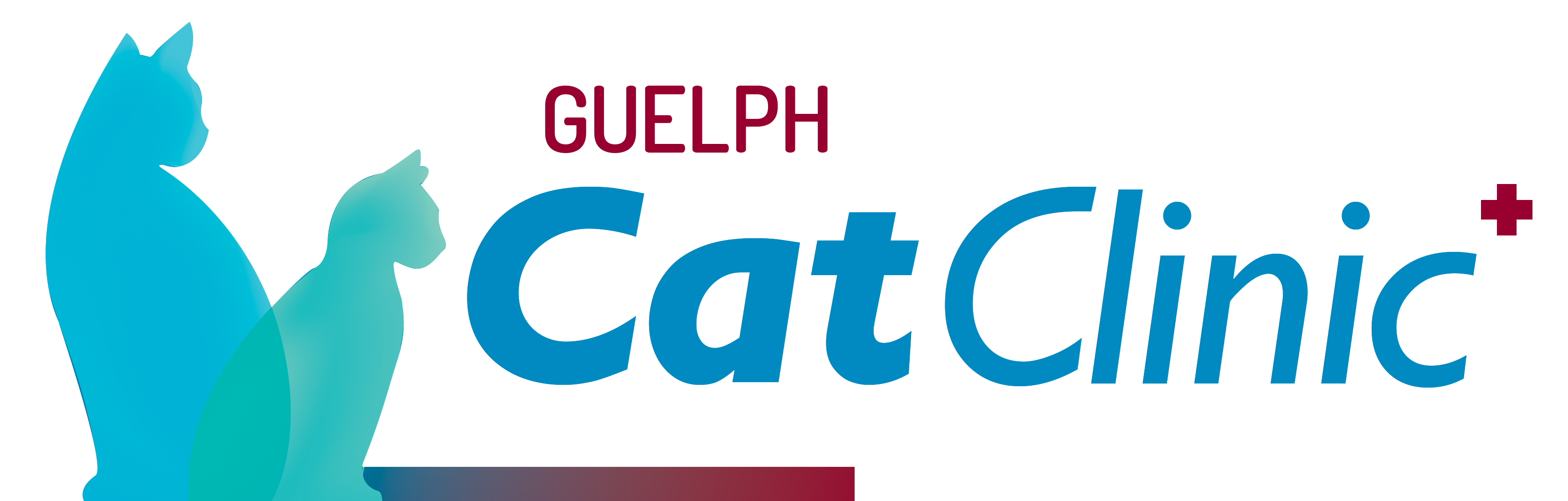 Guelph Cat Clinic